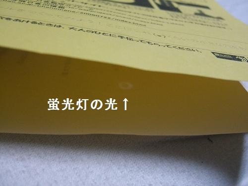e0089232_19443485.jpg