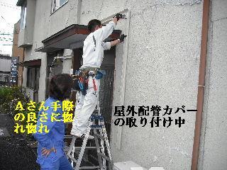 f0031037_17175912.jpg