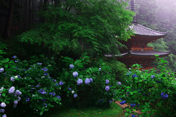雨に煙る岩船寺(加茂・岩船寺)_f0155048_12243444.jpg