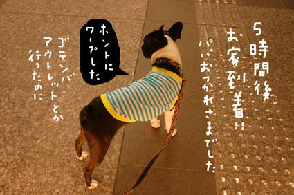 f0170072_1221632.jpg