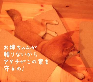 f0068501_22174780.jpg