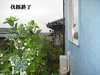f0031037_19213045.jpg
