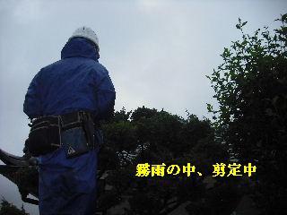 f0031037_1924643.jpg