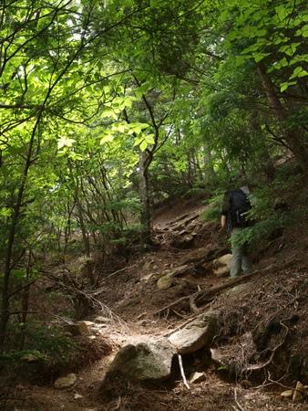 小川山 2009 (21) 水晶へのアプローチはカモシカ登山道?!_a0016346_12361771.jpg