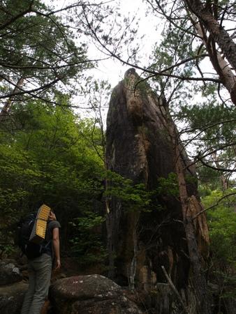 小川山 2009 (21) 水晶へのアプローチはカモシカ登山道?!_a0016346_12362720.jpg