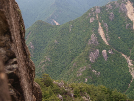 小川山 2009 (21) 水晶へのアプローチはカモシカ登山道?!_a0016346_12364882.jpg