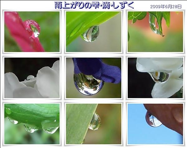 f0104569_23331669.jpg