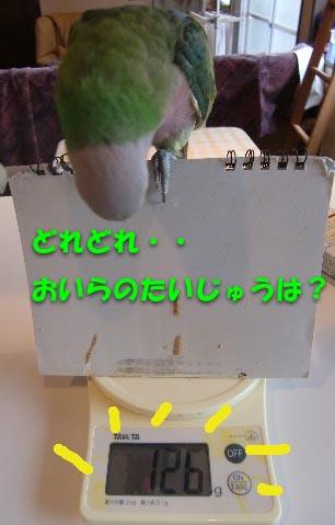 c0133013_15119100.jpg