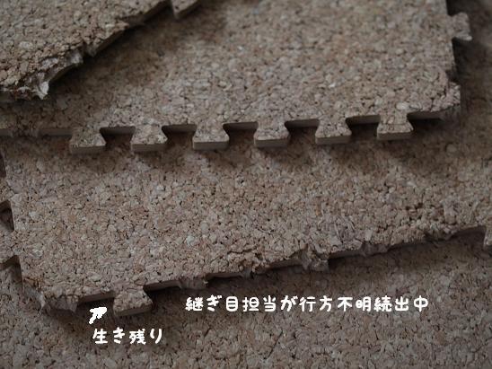 f0133316_1984961.jpg