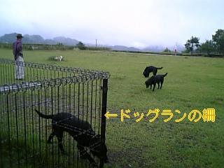 f0148927_20355155.jpg