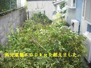 f0031037_20101643.jpg