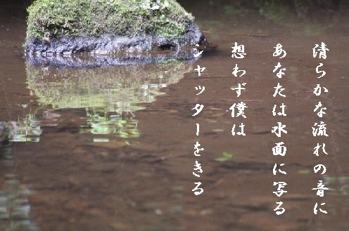 b0173244_772343.jpg