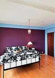 壁の色もいろいろ~_d0118053_15492764.jpg