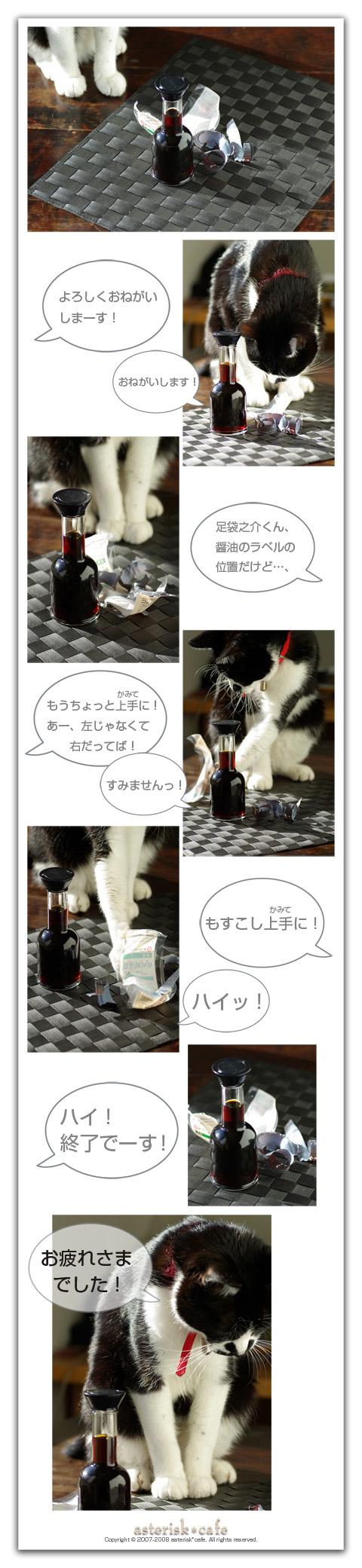 足袋之介ニャ!Vol.3 ~カメラアシスタント体験記 _a0136878_1645924.jpg