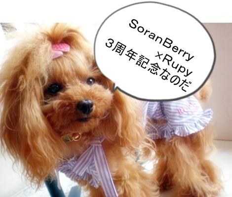 SoranBerry×Rupy rouge_b0084929_18152987.jpg