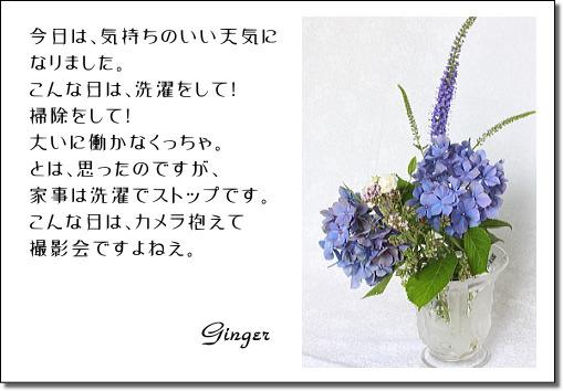 b0066947_1685848.jpg