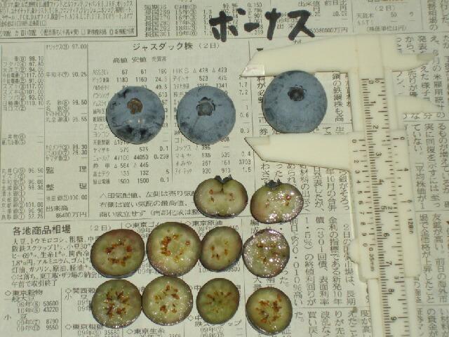 ボーナスの果肉の様子_f0018078_1759939.jpg