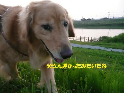 f0114128_2025581.jpg