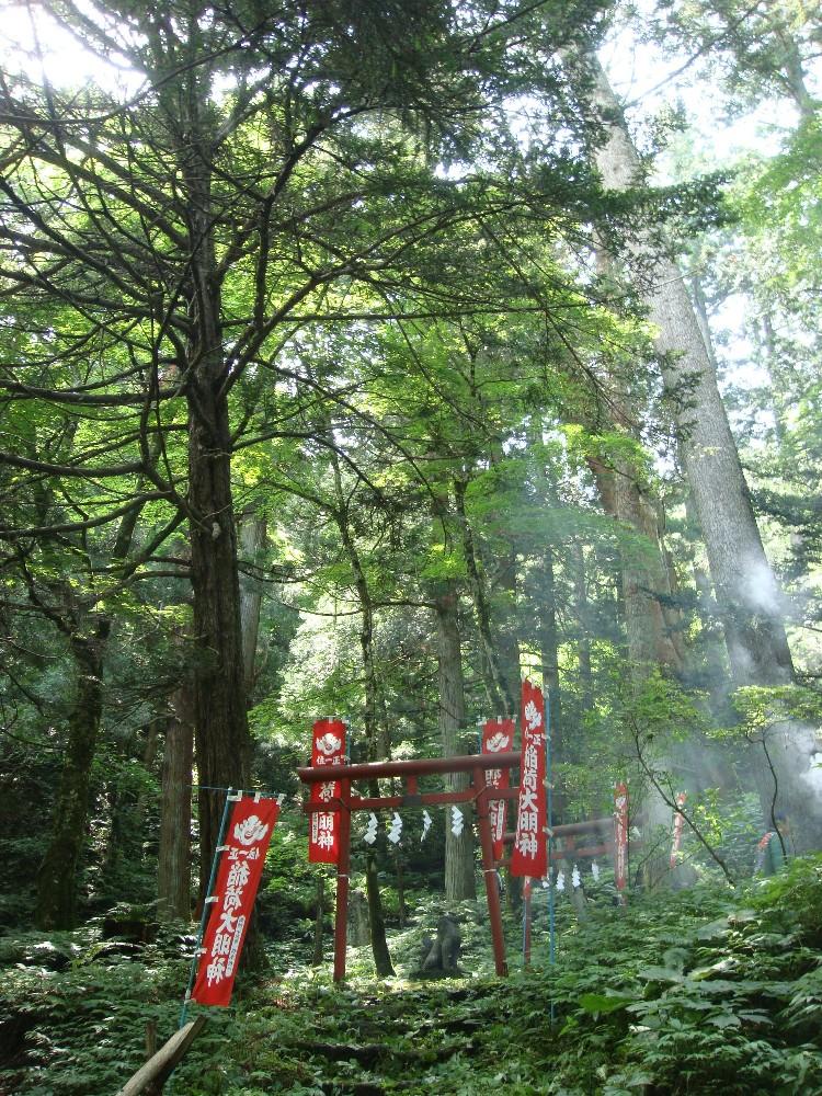 程洞稲荷神社例祭_c0111229_18585353.jpg