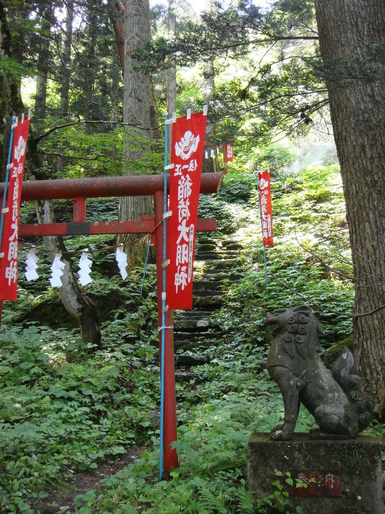 程洞稲荷神社例祭_c0111229_1859617.jpg