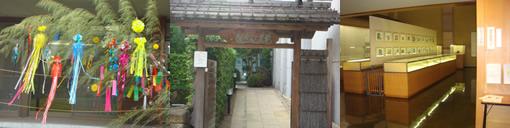 庭園と芭蕉(江東区)_d0132289_13503914.jpg