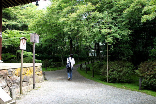 地蔵院(竹の寺)_e0048413_21102397.jpg