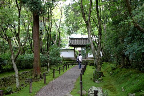 地蔵院(竹の寺)_e0048413_21165813.jpg