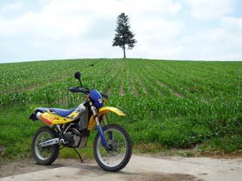 バイクでお散歩♪_f0096216_1634668.jpg