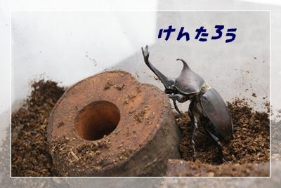 f0197820_843194.jpg