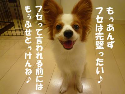 b0170863_232937.jpg