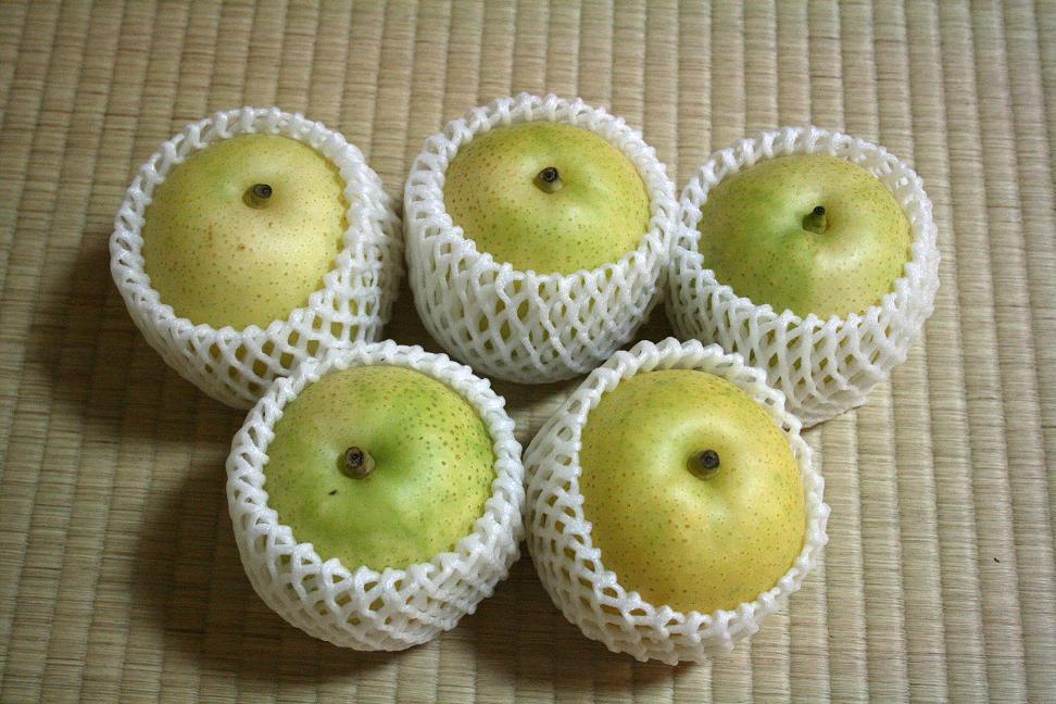 21世紀になったら、『梨畑より愛をこめて』_a0107574_005317.jpg