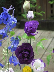 お花のパワー_c0098807_233881.jpg