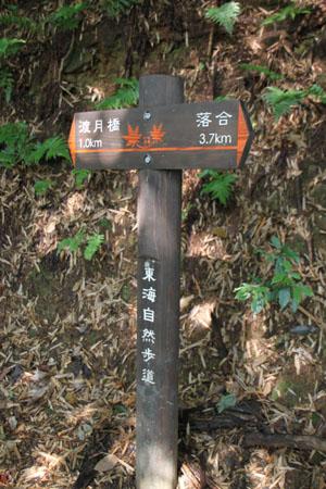 嵯峨野ー竹林の道_e0048413_1835830.jpg