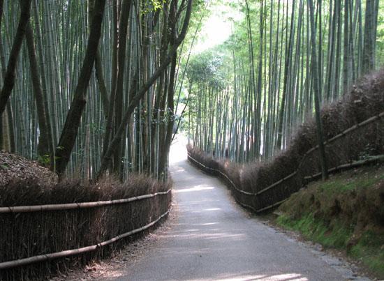 嵯峨野ー竹林の道_e0048413_1836692.jpg