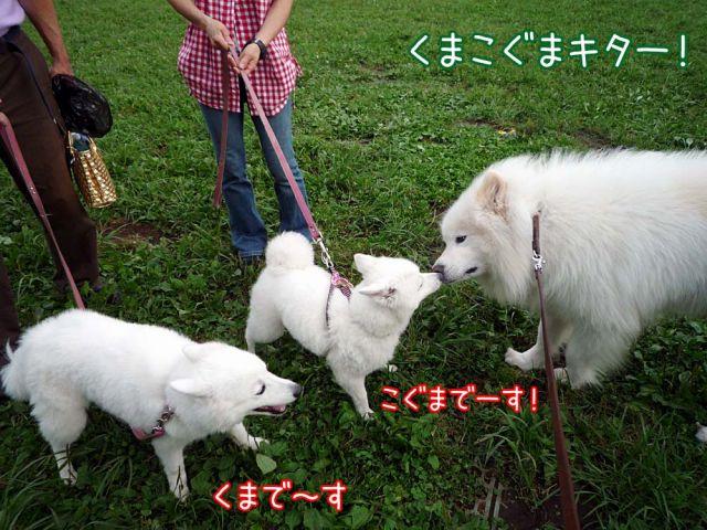 ともだちイパーイ♪_c0062832_16411995.jpg