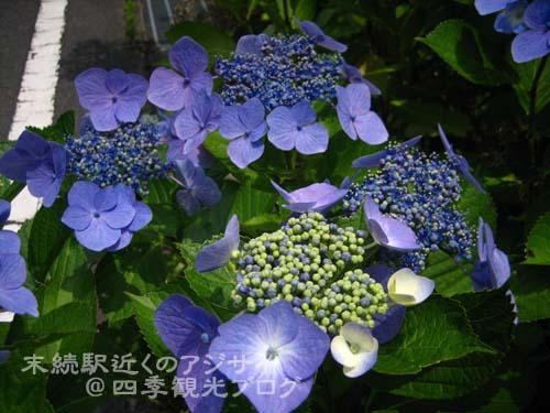 f0105342_15201955.jpg
