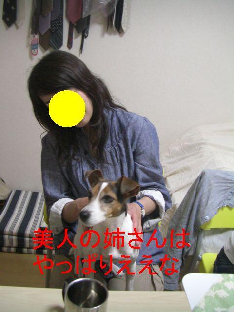 f0053952_137372.jpg