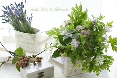 7月Season Lesson〜Fresh Herbs & Lavender〜 _d0141376_8563499.jpg