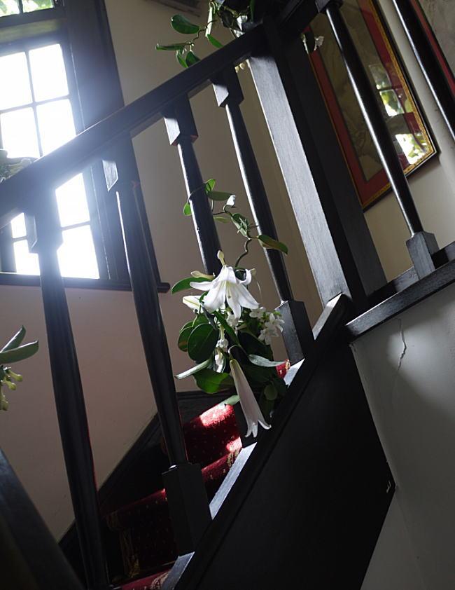 階段のユリ_a0042928_23374433.jpg
