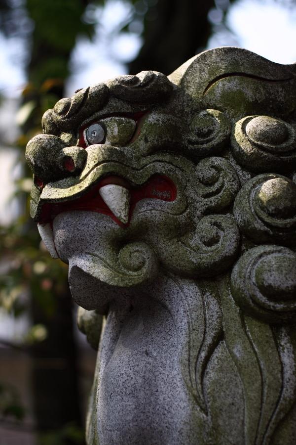 久しぶりの朝の散歩 ~日枝神社~_b0157849_1122749.jpg