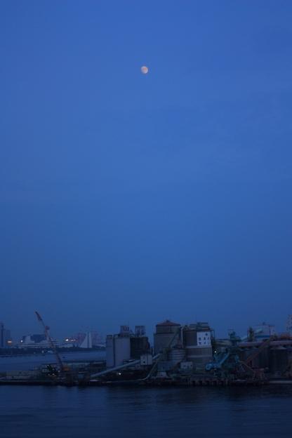 夜の海_d0151003_265529.jpg