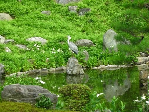 京都旅日記その6_a0115906_715871.jpg