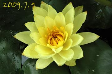b0012811_10545966.jpg