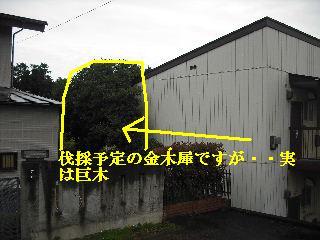 f0031037_22481821.jpg