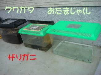 a0020601_19561445.jpg