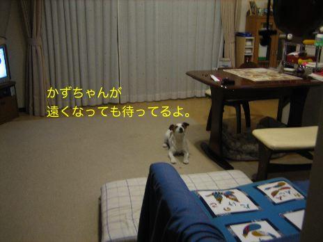 c0179472_22305318.jpg