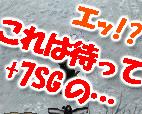 c0013975_1583560.jpg
