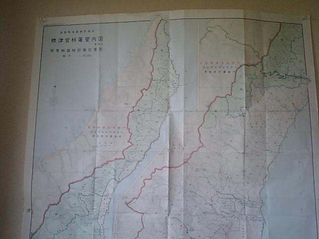 知床シーカヤック遠征 成功_f0087787_1528144.jpg