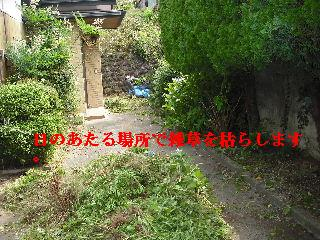 f0031037_193548.jpg