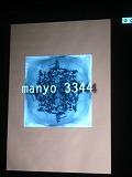 f0169942_051312.jpg